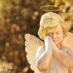 悪魔のように細心に。天使のように大胆に。