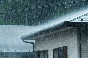 梅雨の季節ですね